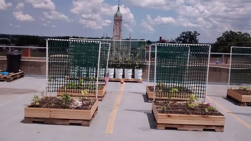 Garage Rooftop Garden