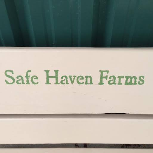 Safe Haven Farms