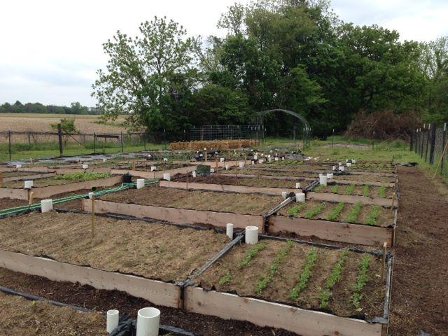 Safe Haven Farms